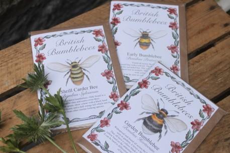 Beautiful Bee Card